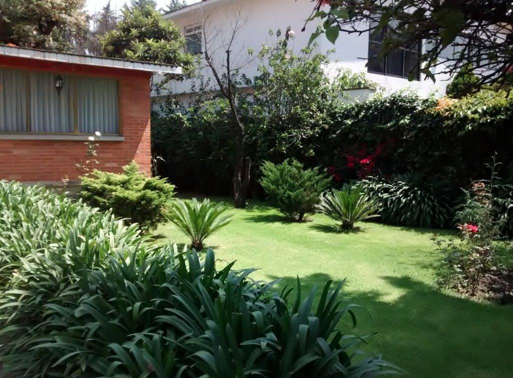 venta planta jardin zaragoza: